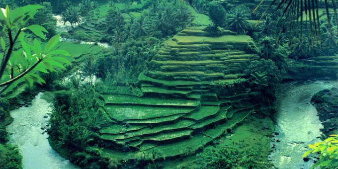 bali tour package 6 days