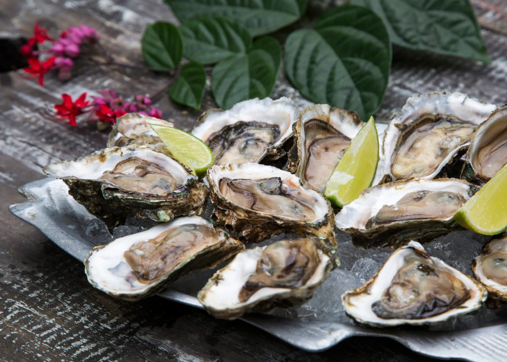 Tasty oysters on ice with lemon. Wood background.
