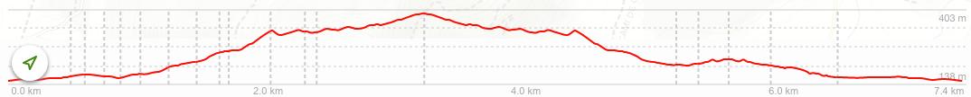Altimetria RS5 Galatzó a Sa Vinya
