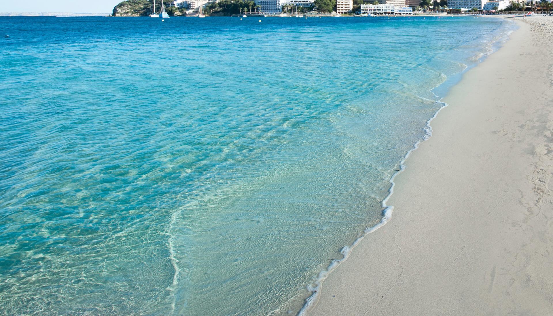 palmanova playas servicios y entorno