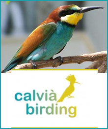 Calvia birding , Patrimonio histórico de Calvià