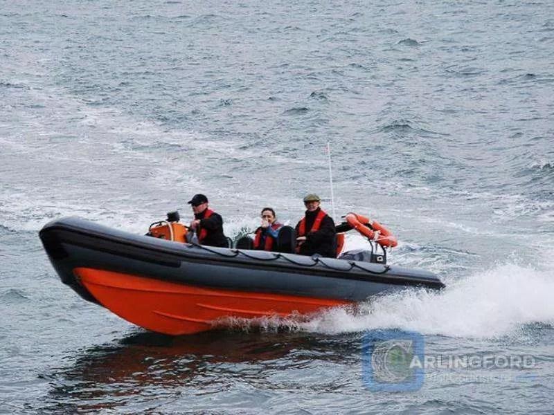 Boat-Trip-Carlingford-Lough-Boating-Trips-5