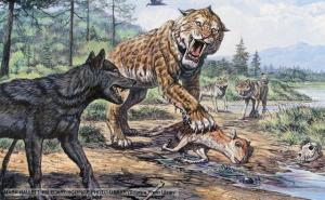 Dire Wolf and Smilodon