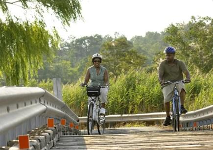 Bicycling Couple Bridge