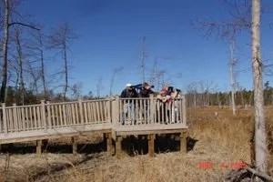 Blackwater National Wildlife Refuge Tubman Road Trail