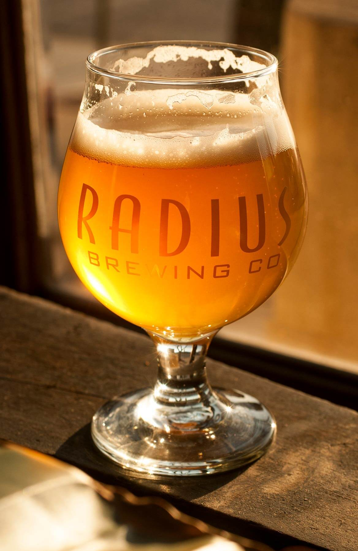 craft beer from radius brewing