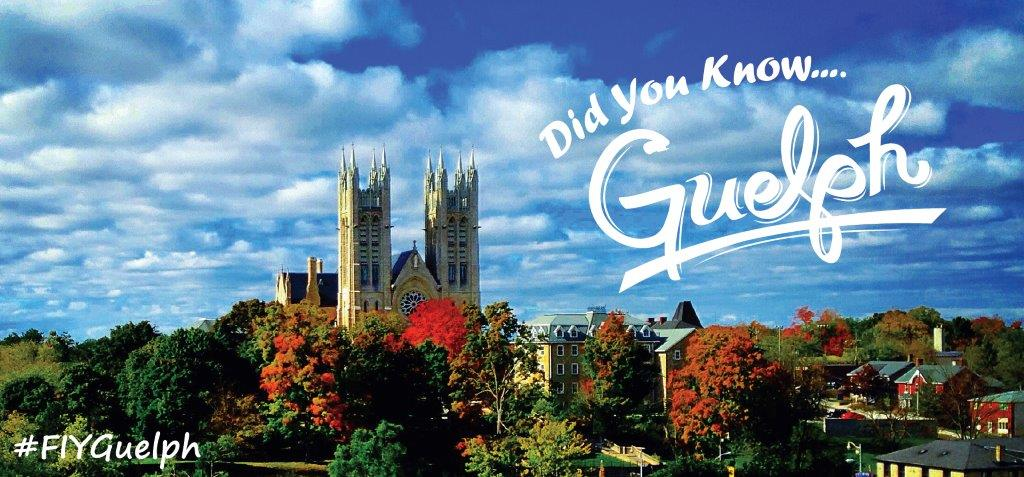 Did You Know Guelph Banner