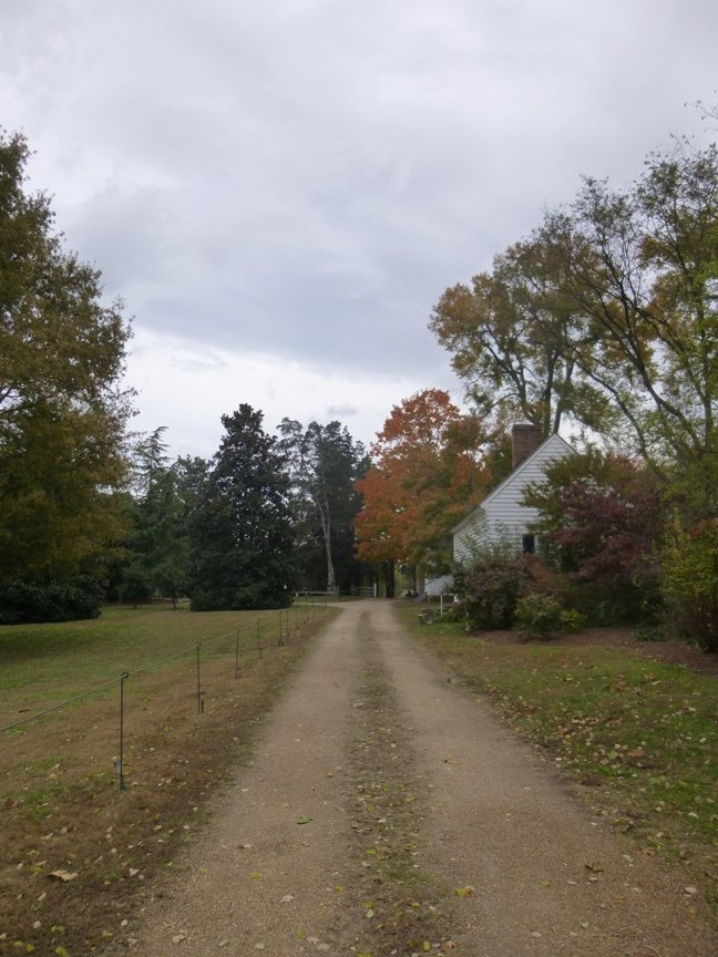 fall blog 12