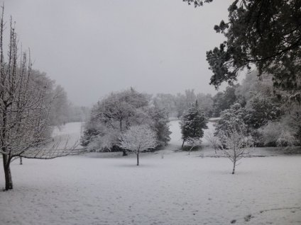 r-winter 2013 069