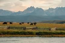 Fall Sawtooth Valley Visit Idaho
