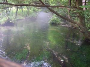 信州の名水・秘水 上高地 清水川