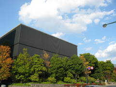 2009/10/16 松本の街中も少し色づき始めました。