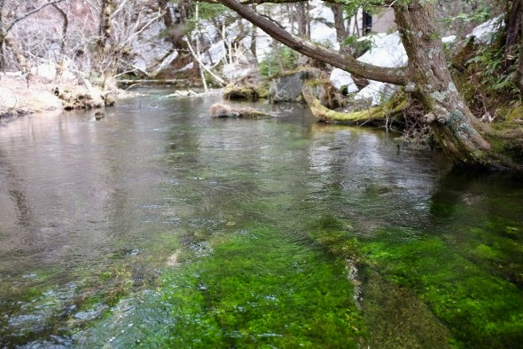 Crystal clear water from the natural spring