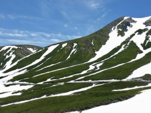 Snow Walls on Mt. Norikuradake