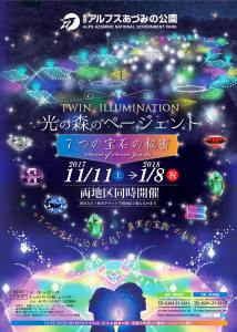 Twin Illuminations poster
