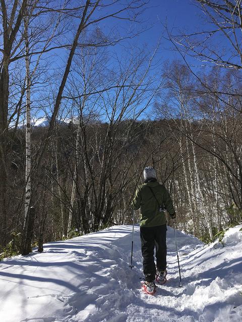 Snowshoeing along...