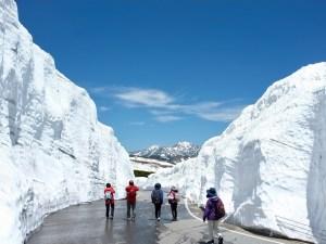 Snow Walls on Mt. Norikuradake