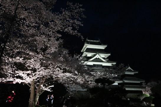 2018-4-4夜桜会2