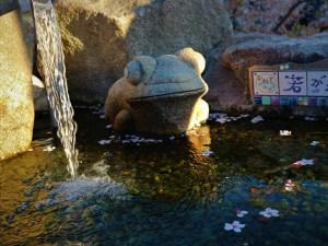 「水巡りさんぽ」水巡りマップ2完成記念ツアー一緒に水巡りしませんか!
