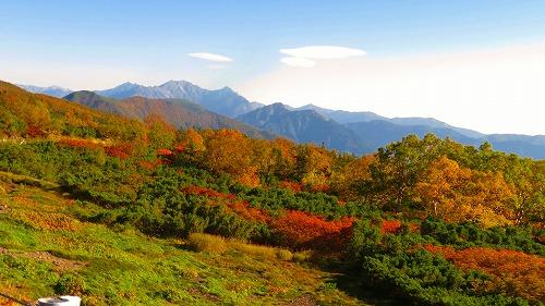 Mt. Norikuradake is full of fall colors already!