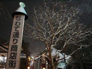 雪降る夜の matsumoto city