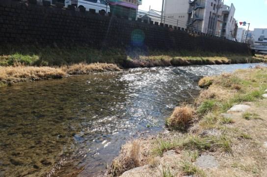 女鳥羽川2019‐3月