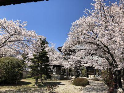 松本正麟寺