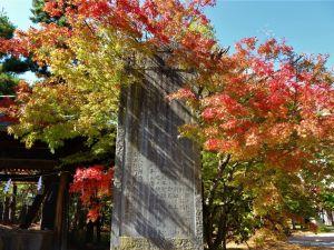街中の紅葉情報 四柱神社