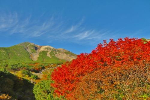 乗鞍岳の紅葉は、今週末がピークです!!