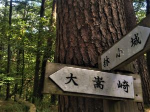Hiking Up Through History: The Twin Ruins of Hayashi Castle