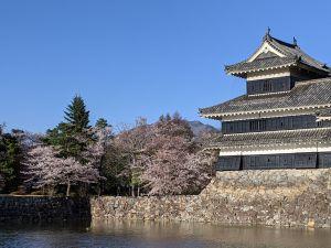 Les Sakura à Matsumoto – Partie 3 : Le Château de Matsumoto