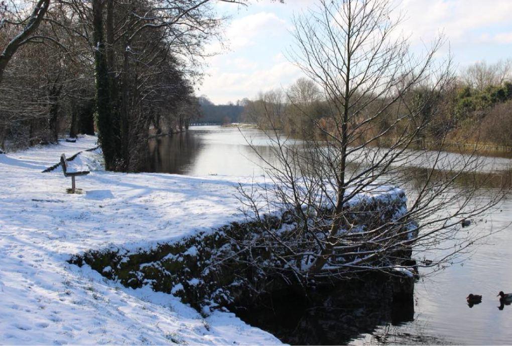 Snowy River Weaver