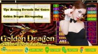 Tips Menang Bermain Slot Games Golden Dragon Microgaming