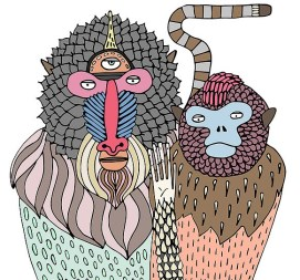 primates-4
