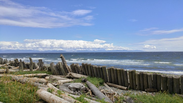 Seaside at Goose Spit, Comox Valley