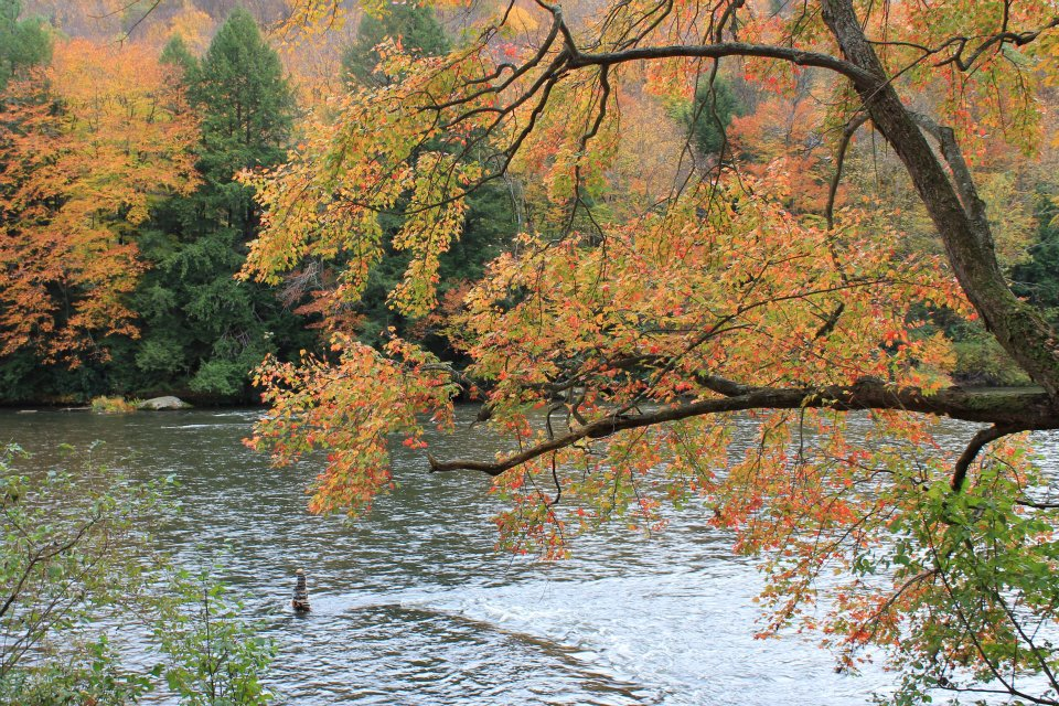 True Tales of the Clarion River: How Gravel Lick was Named