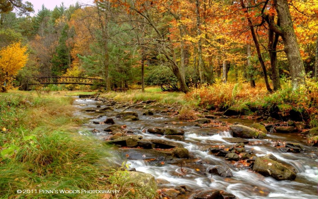 Celebrate 50 Years of Protected Trails and Rivers in the Pennsylvania Great Outdoors