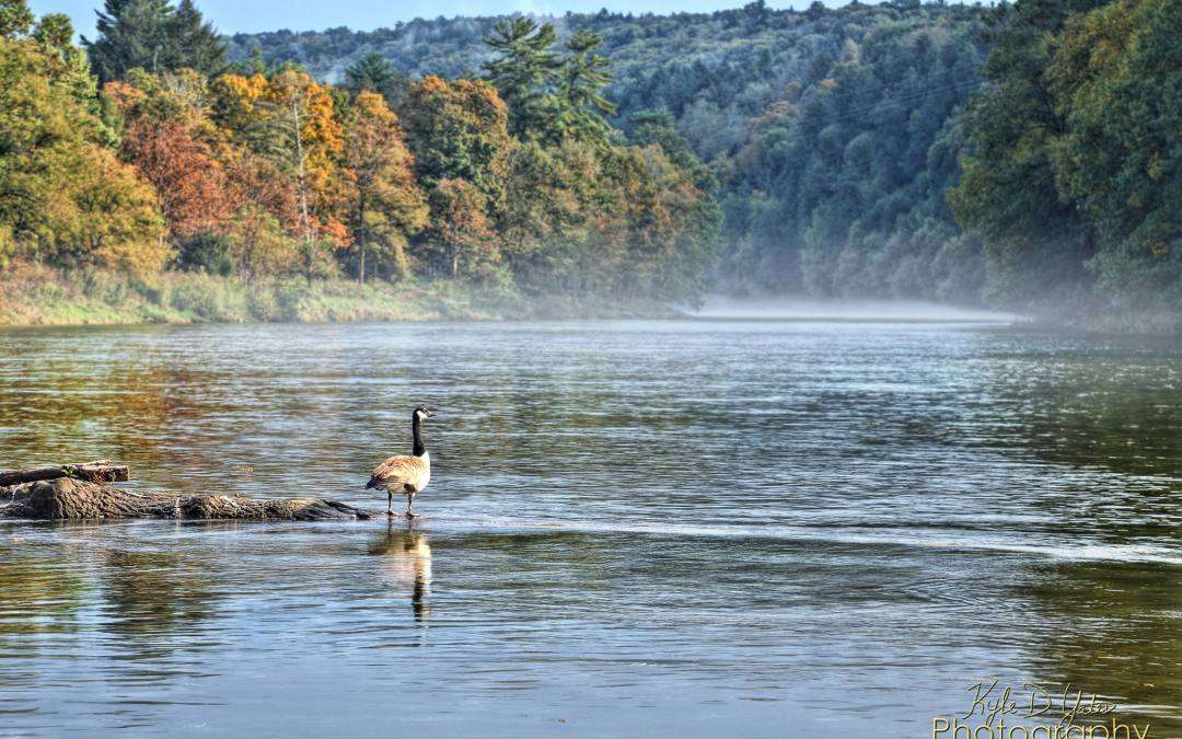Clarion River Nominated for Pennsylvania River of the Year