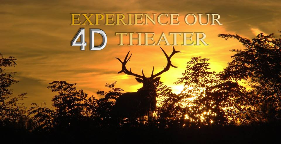 Elk Country Visitor Center Premieres New 4D Film