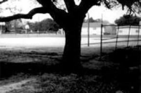 Zychlinski Park in Pearland
