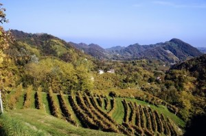 Visit Prosecco Italy rolling prosecco hills