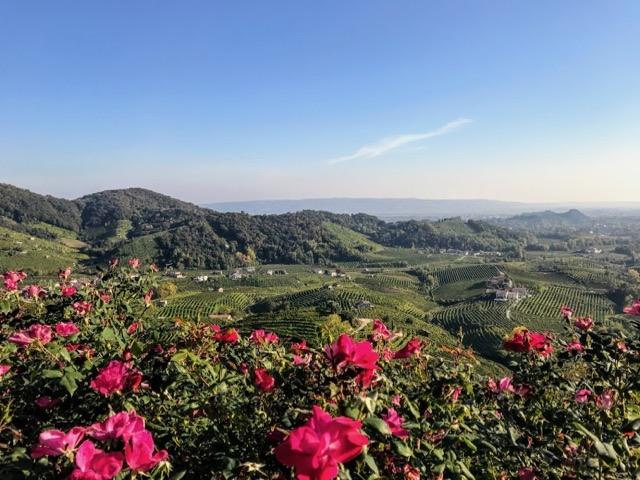 Visit prosecco Italy Vineyards Col Vetoraz View