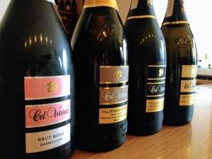 Visit prosecco Italy Vineyards Col Vetoraz Wines