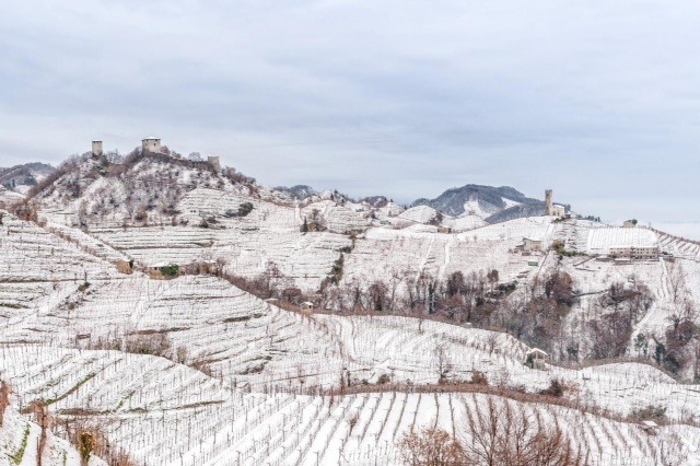 Prosecco region in winter