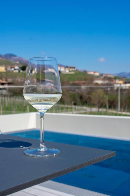 Visit Prosecco Italy Nani Rizzi Winery