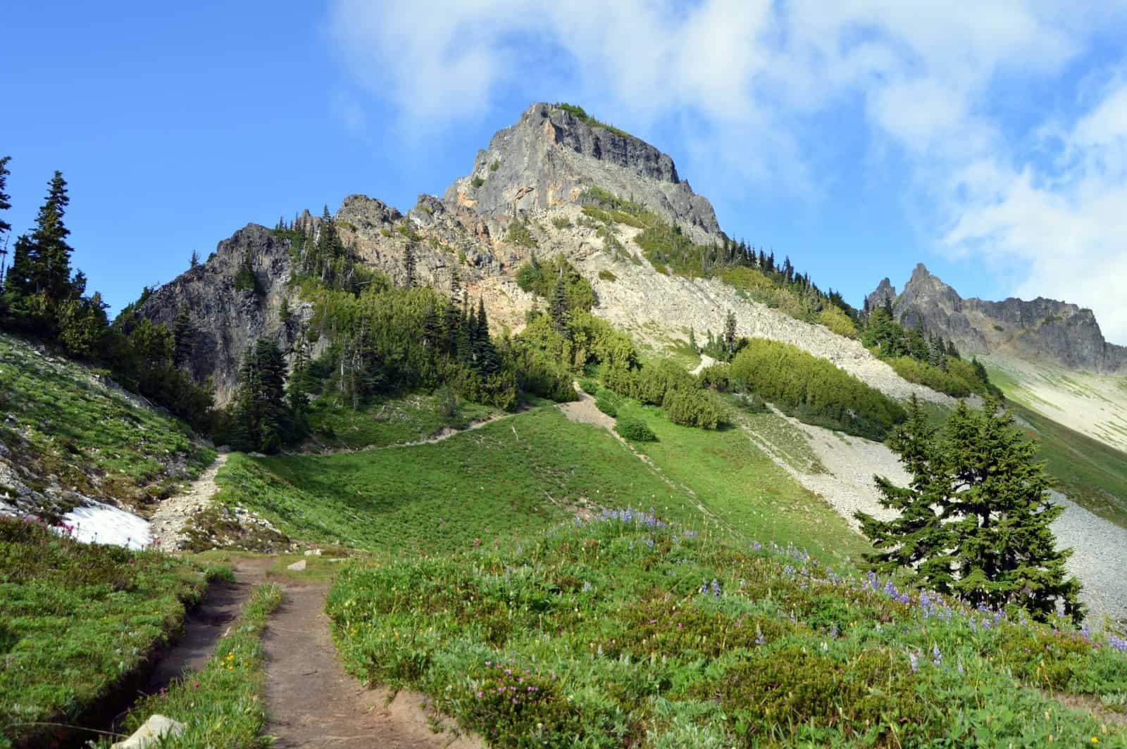 trail description, photos and video coming soon! Pinnacle Saddle Plummer Peak Visit Rainier