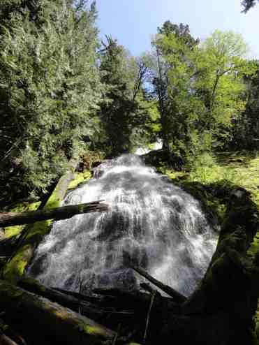 Beautiful waterfall on Dalles Creek © Craig Romano