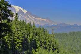 Mt. Rainier hovers in the background. © Craig Romano