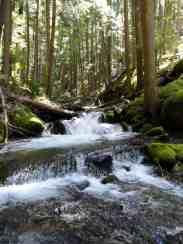 Cascading Deep Creek © Craig Romano