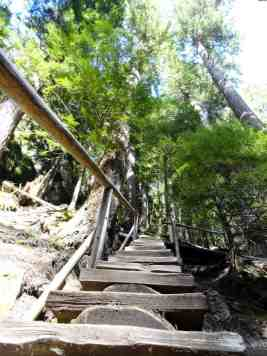 Stairs help negotiate a steep section of trail within the ravine © Craig Romano